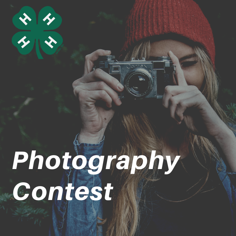 NC 4-H Photography Contest