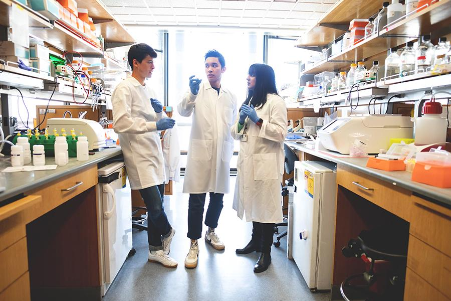 Three researchers wearing lab coats between two lab benches in the Perera Lab