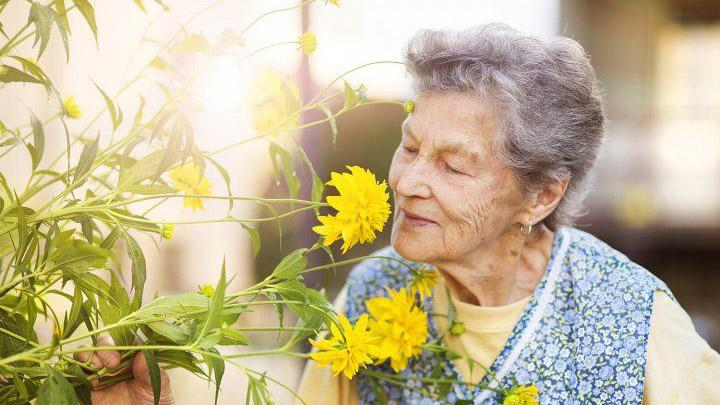 Elderly woman smelling flowers