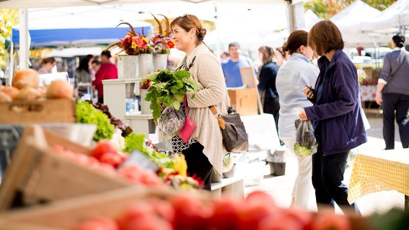 People patronizing a farmer's market