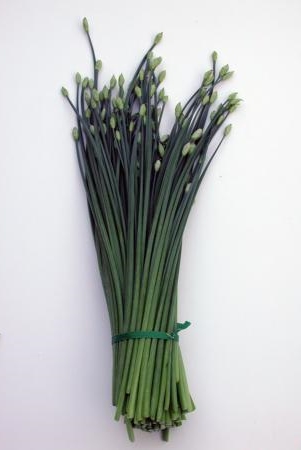 Chinese Chives Photo by Aziz Baameur