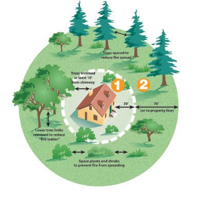 Fire defensible space landscaping guidelines