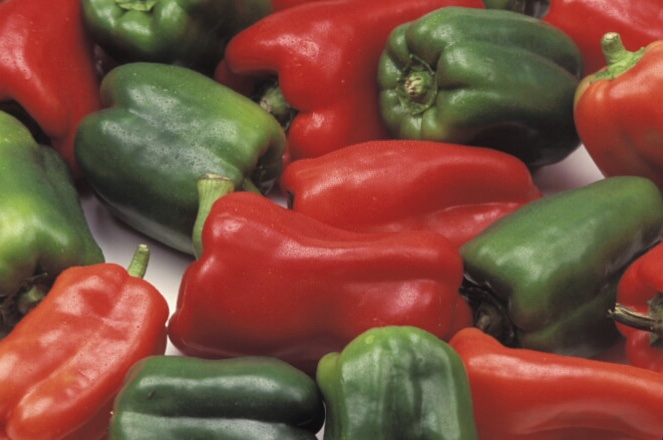 Red and green bell peppers from UC ANR Repository