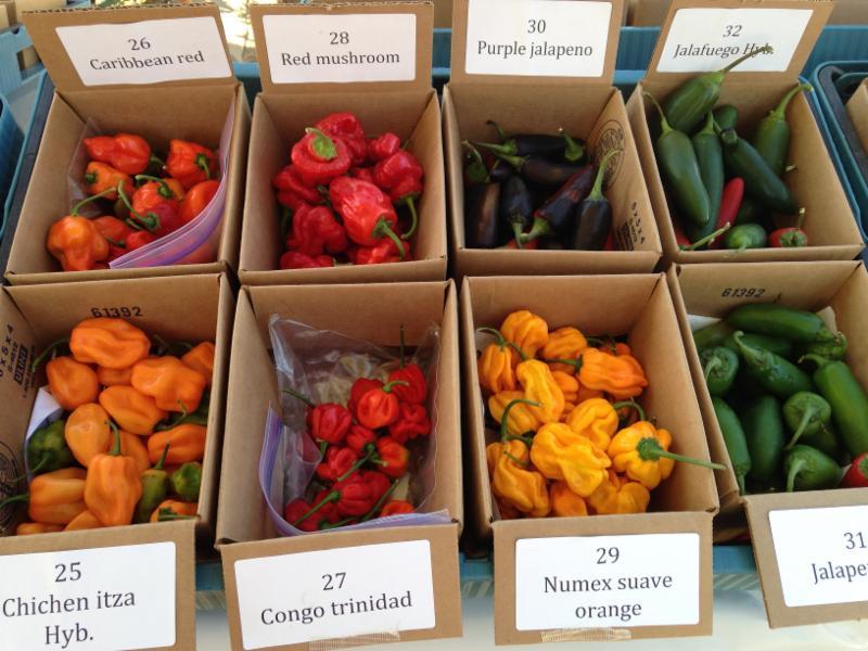 Fruit & Vegetable Preservation Resources Blog
