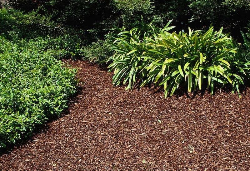 Mulch-UC Division of Agriculture and Natural Resources Green Blog