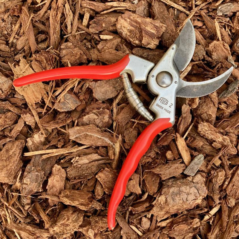 Pruning shears by Allen Buchinski