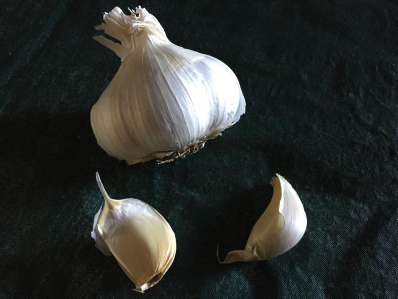 Garlic by Laura Monczynski