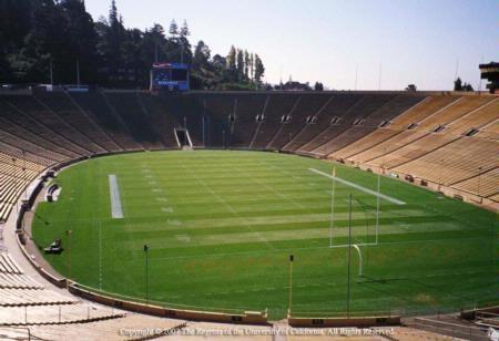Athletic field turf Photo by M. Ari Haravandi