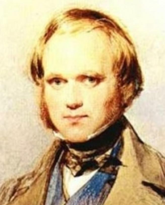 Darwin Scientist