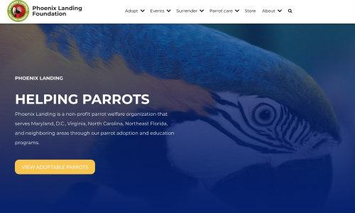 Screenshot of new Phoenix Landing website
