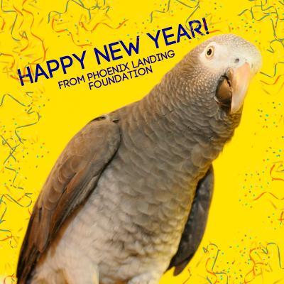 Happy New Year from Phoenix Landing