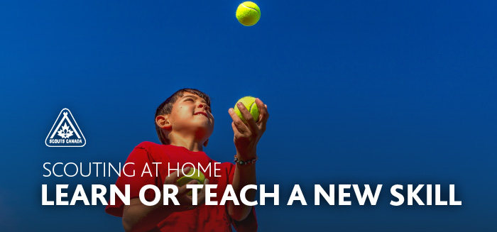 Scouting at Home: Learn or Teach a New Skill