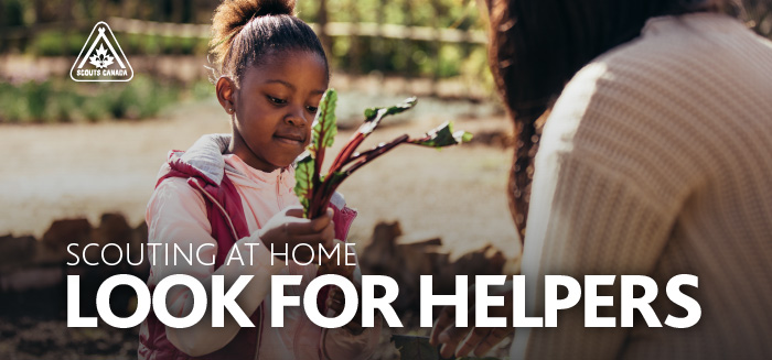 Scouting at Home: Look for Helpers