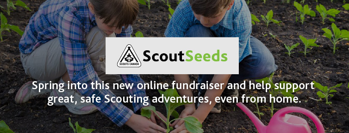 ScoutSeeds