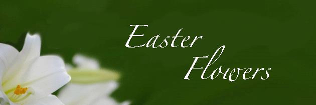 Easter Flowers Header