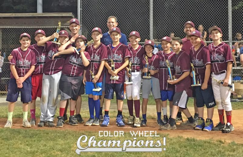 Color Wheel's McLean Little League Champions
