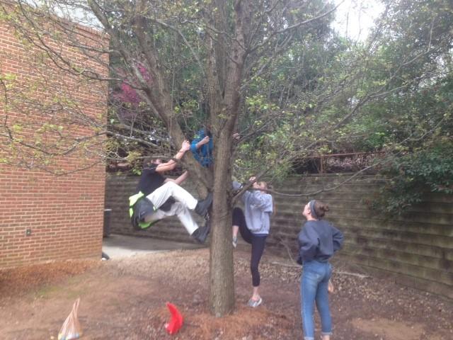 Youth Egg Hunt 2018- climb tree