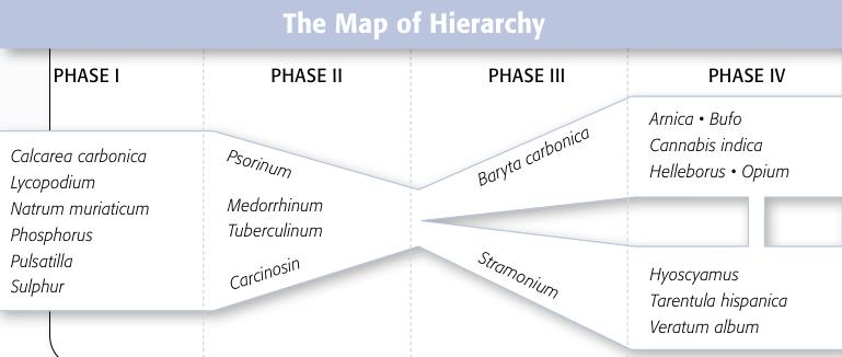 Map of Hierarchy