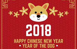 Chinese New Year Festival 2018