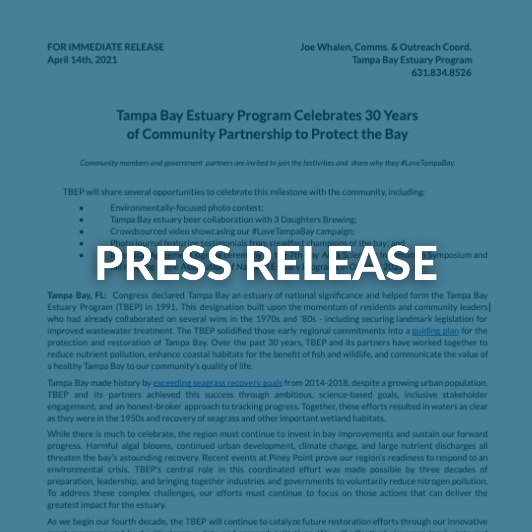 Copy of Press Kit Graphic Template.png