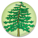 leaning-tree-icon.jpg
