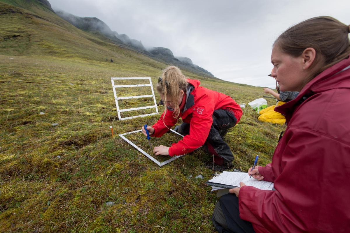 Fieldwork_Svalbard_ Norway_credit Lawrence Hislop.jpg