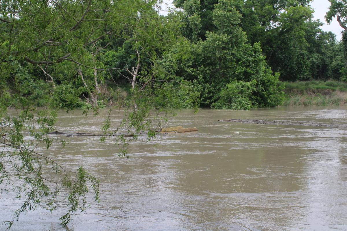 Wooden debris floats in flooded Guadalupe River.