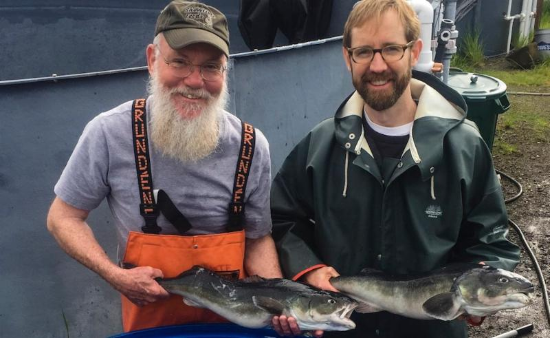 NOAA scientists Bill Fairgrieve and Adam Luckenbach hold sablefish from a trial that was completed during the first week of May 2017, when the scientists made their first harvest of mature fish raised in net pens. Photo by Edward Hayman