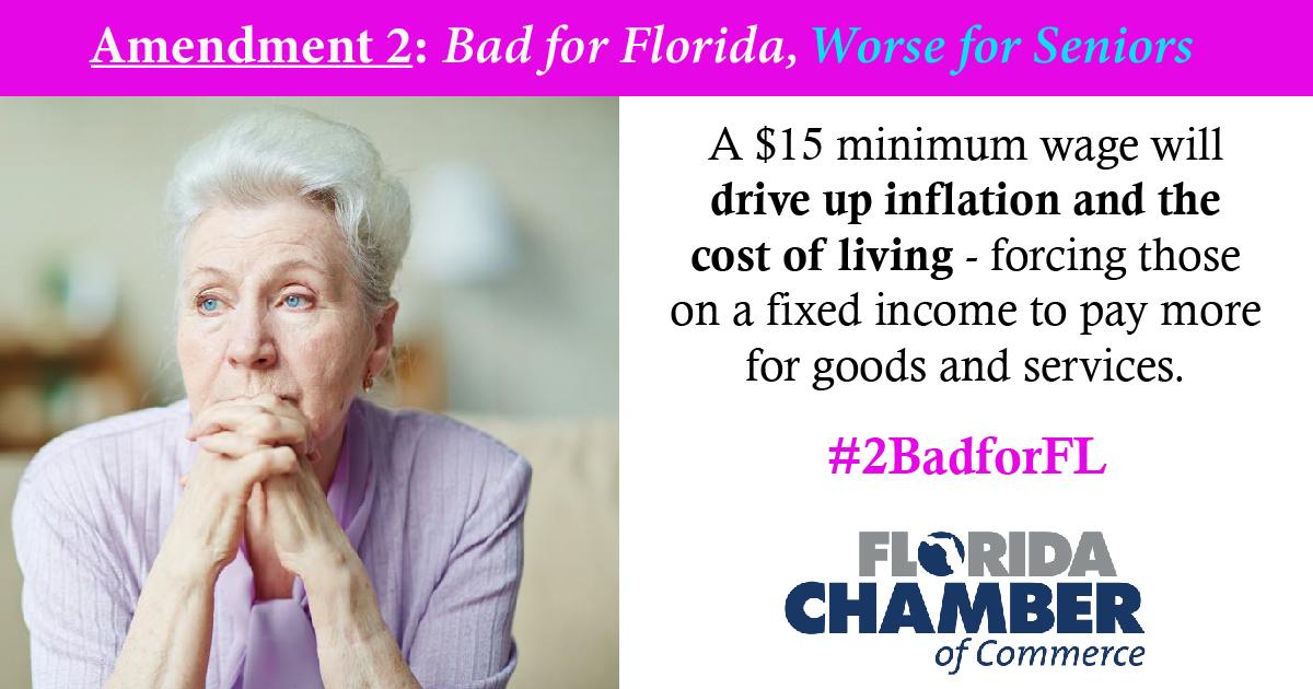Amendment 2 Bad
