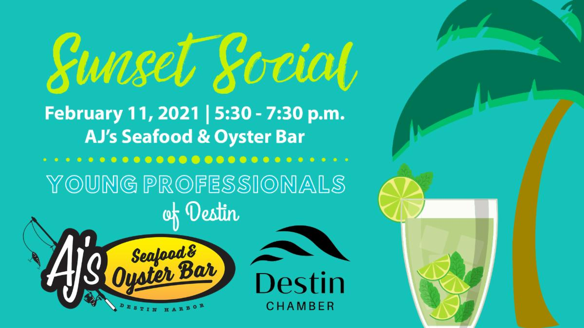 Young Professionals Sunset Social