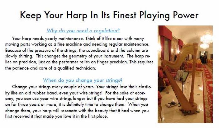 Liza Jensen, International Harp Technician: in Tampa Bay