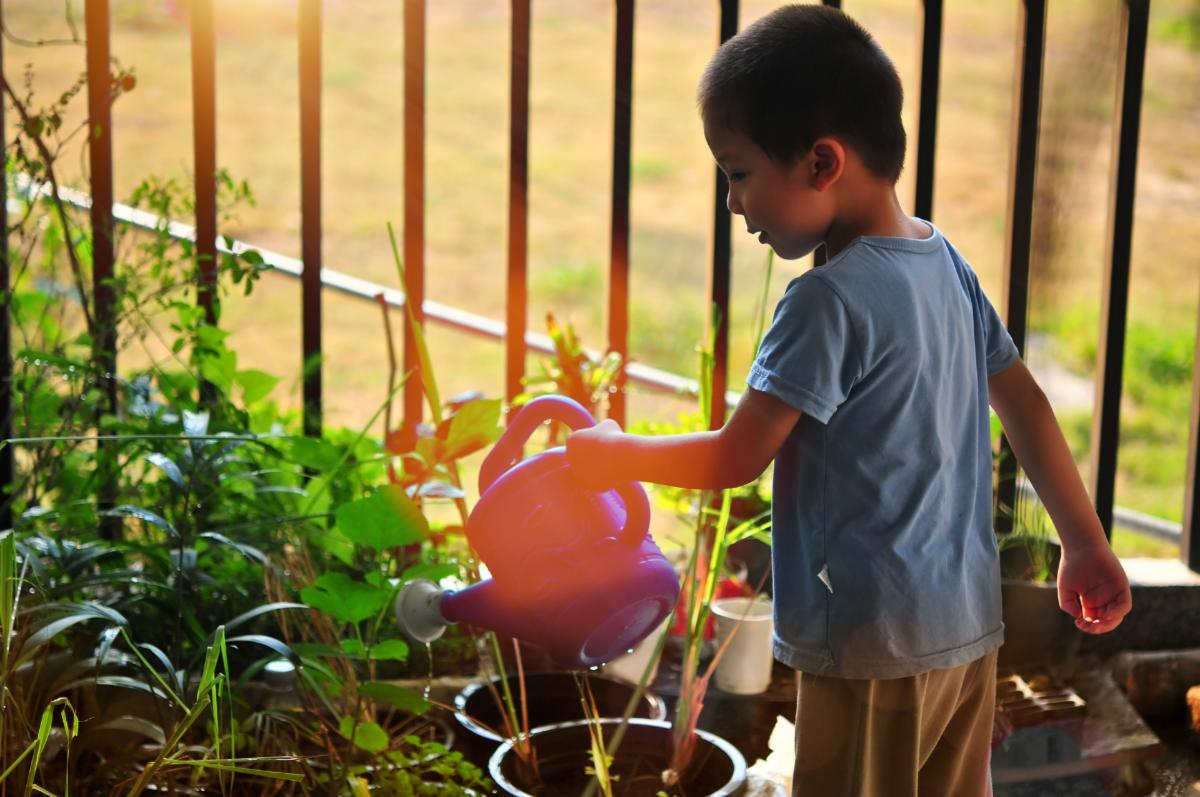Young boy waters plants in containers