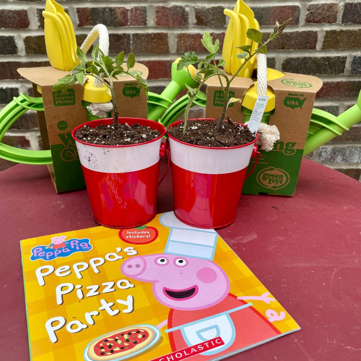 Tomato transplants sit next to a copy of Peppa's Pizza Party