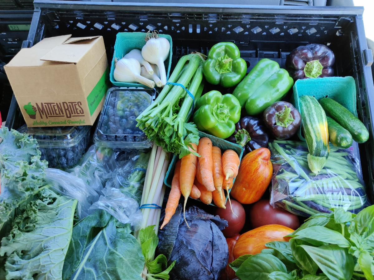 CSA delivery with fresh produce from Heidi Bombrisk