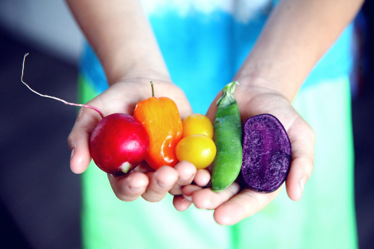 Hands holding bright rainbow-colored fresh produce