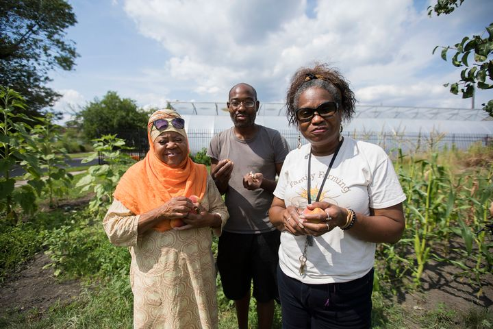 Three people holding vegetables in front of their hoophouse.