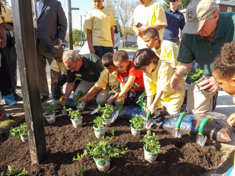 Children transplanting in a raised garden bed