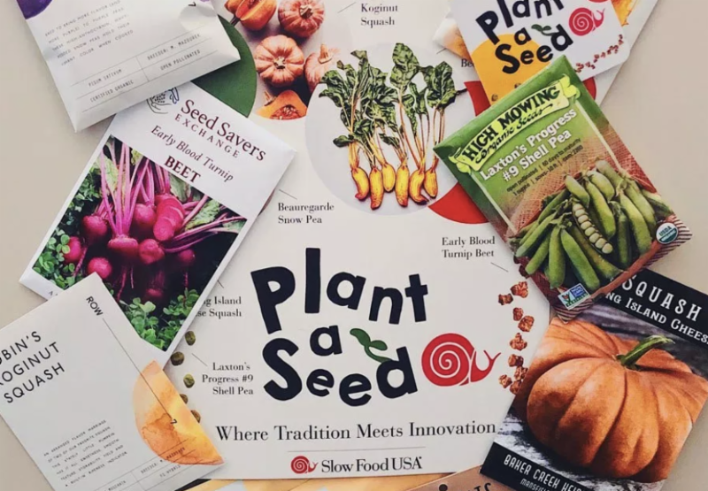 Seed kit from Slow Food USA