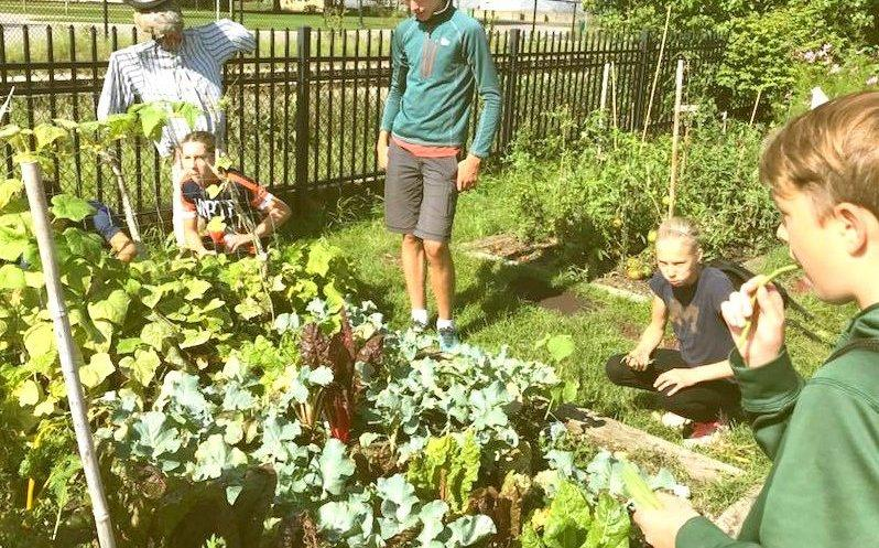 Children's gathered around a raised bed at the Grand Traverse Children's Garden prior to the pandemic