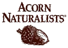 acorn naturalists  logo 2018
