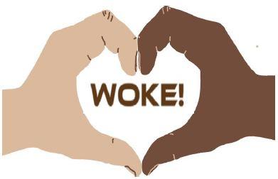 woke program logo
