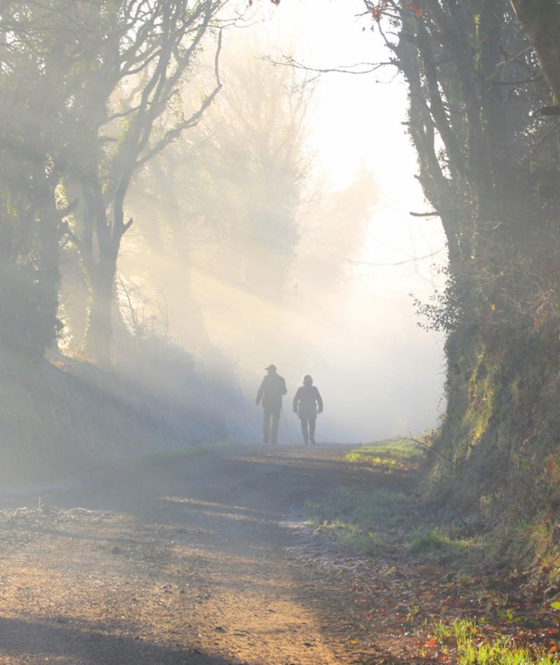 people walking in fog image