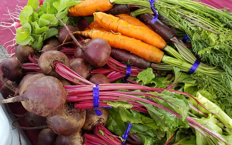 Bunches of carrots and beets.