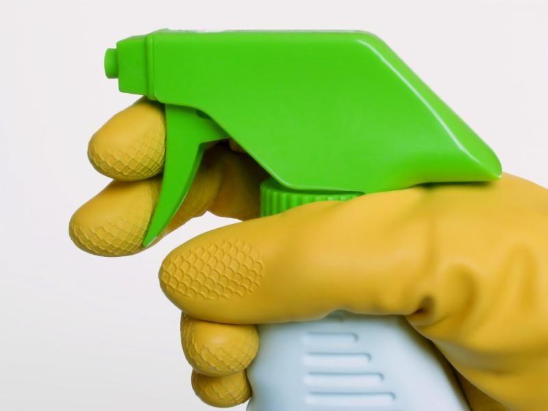 Gloved hand holding spray bottle.