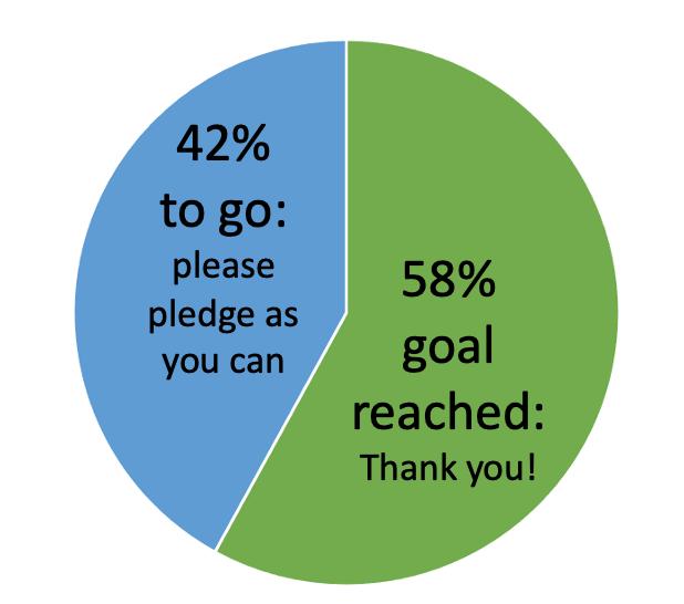 Pledge Pie Chart showing 58% goal reached