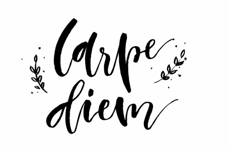 Carpe diem. Handwritten text. Modern calligraphy. Inspirational quote. Isolated on white