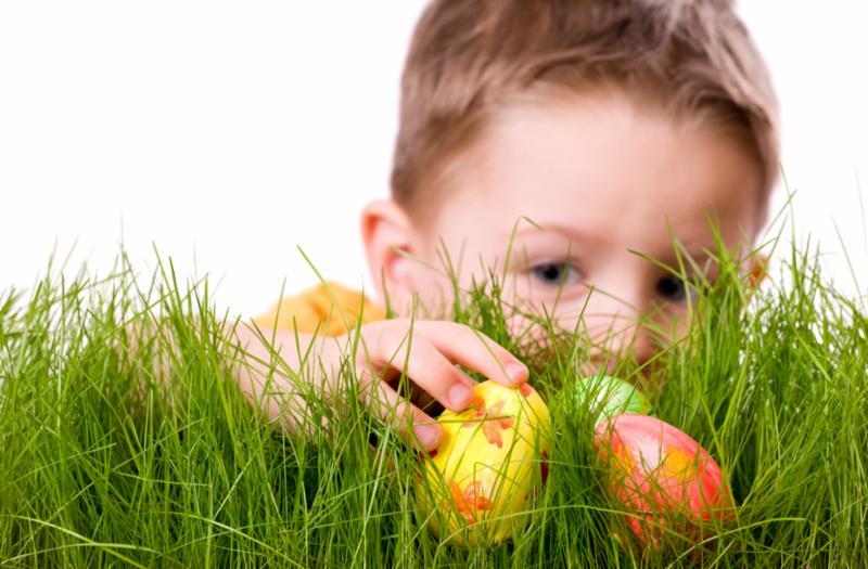 easter_egg_hunt.jpg