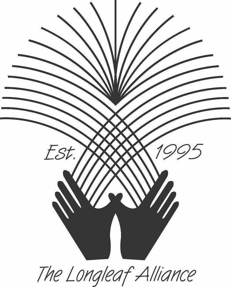 Longleaf Logo
