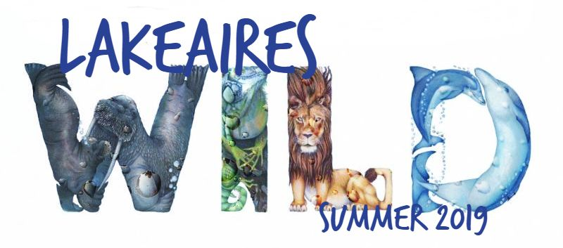 Summer News at Lakeaires Extended Day! July 1st-5th