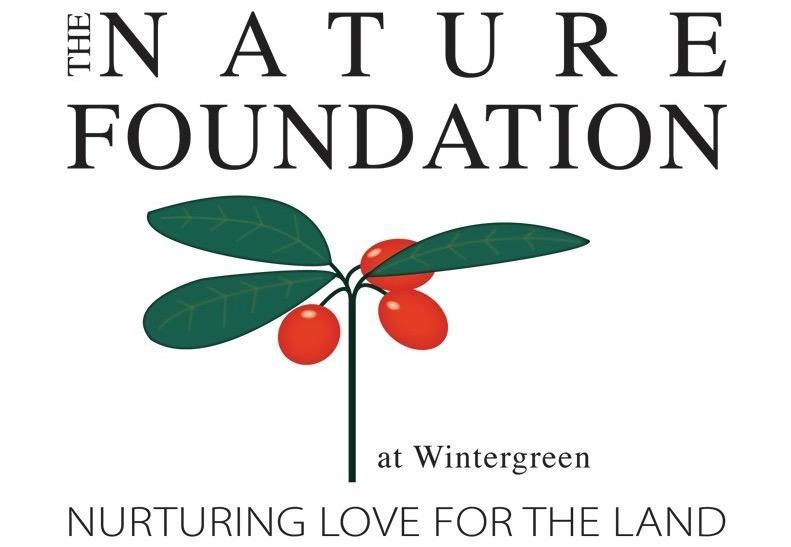 TNF Vert Logo